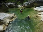 dans les nages